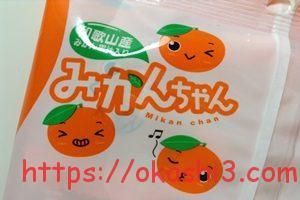 川口製菓 みかんちゃん 和歌山 有田みかん